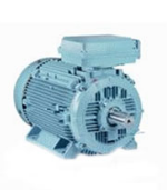 IE2 High Efficiency Cast Iron Motor