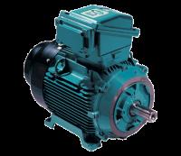 Brook Crompton Ex d(e) Hazardous Area AC Motor