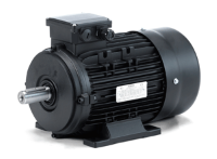 Hoyer ATEX Zone 22 Electric Motor