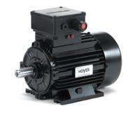 Hoyer EX Electric Motor