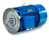 Hoyer IE1 Marine Electric Motor