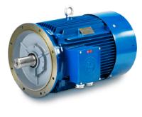 Hoyer IE1 Marine Electric Motor
