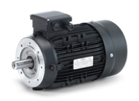 Hoyer IE2 Industrial Electric Motor