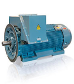 NEMA High Voltage Induction Motor